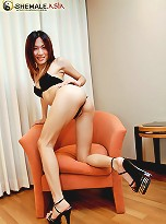 Cute horny ladyboy strokes her feminine cock
