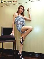 Tall Thai ladyboy hooker jerks off