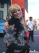 Trannies From Rio the Janeiro's Gay Parade 2008