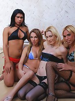 Shemale foursome fucking side by side